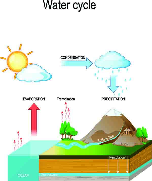primary science tuition singapore diagram on the water cycle